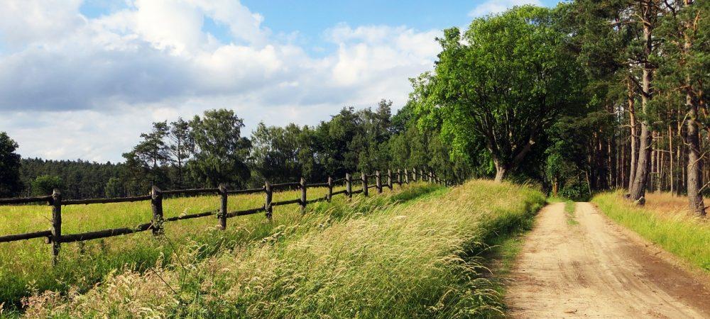 Tanzlindenradweg
