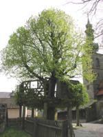 Limmersdorf