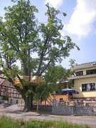 Rehensdorf